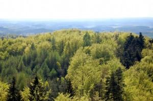 Wzgórza Szymbarskie