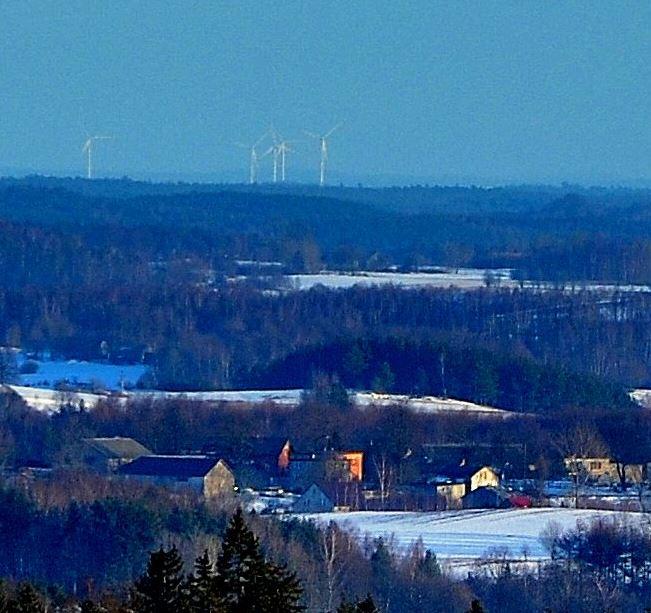 Wzgórza na Pojezierzu Iławskim widziane z Wieżycy (na ostatnim planie za wiatrakami).