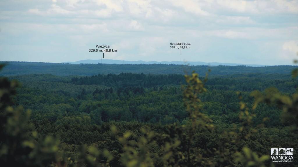 Widok z wieży widokowej na Siemierzycy w stronę Wzgórz Szymbarskich.